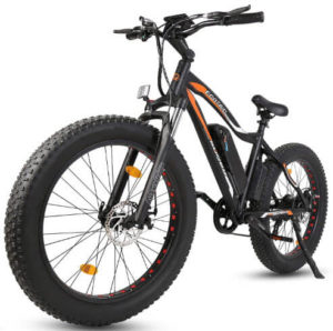ECOTRIC Powerful Electric Bicycle