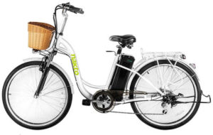 NAKTO Cargo Electric Bicycle
